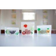 Dr. Brown's - Pungi reutilizabile pentru gustari, 3 pack, BPA Free