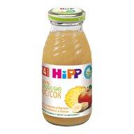 HiPP - Suc Hipp de mere banana si ananas