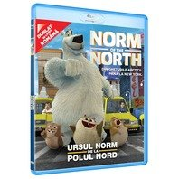 BD: NORM OF THE NORTH - Norm de la Polul Nord