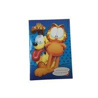 Caiet Garfield A5 foaie velina