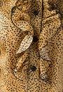 Bluza galben mustar cu picatele negre si volanase Penelopa