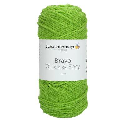 Acrylic yarn Bravo Quick & Easy - Lime 08194