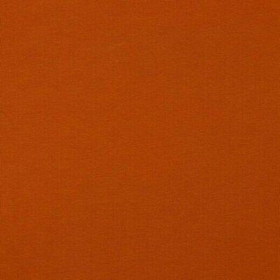 Organic Cotton Jersey - Amber