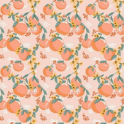 Printed Poplin - Tasty Fruit Salmon