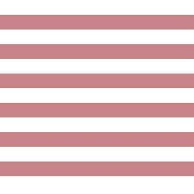 Poplin imprimat - Stripe Rose