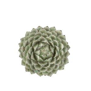 Flower Decoratiune perete mica, Polirasina, Verde