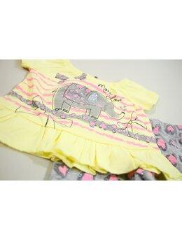 Compleu elefantica galben