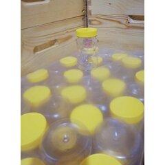 Borcan miere plastic alimentar urs 500g bax 50 buc